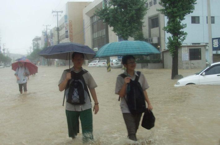 2002 강릉 태풍 루사 피해 및 복구 현장 (66/73)