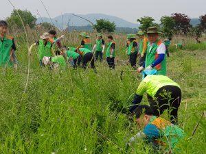 [활동] 환경의 날 기념 환경보호 활동 안녕 리액션 캠페인 -온시민크린데이