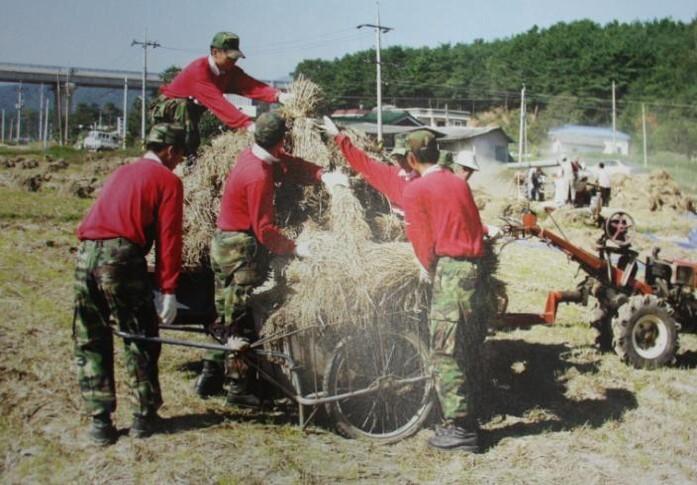 2002 강릉 태풍 루사 피해 및 복구 현장 (62/73)