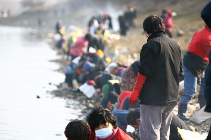 고령군 낙동강 원유유출 관련 자원봉사