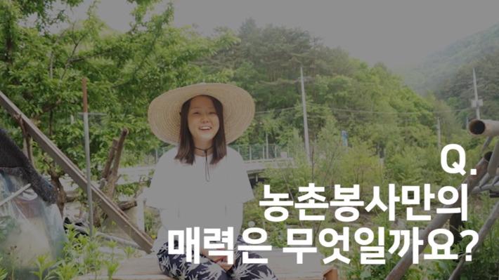 농촌봉사활동, 진짜 도움이 되나요? : 농농