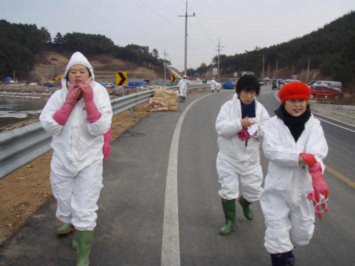 허베이스피릿호 원유유출 피해복구 자원봉사활동